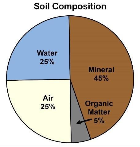 Image result for soil composition diagram