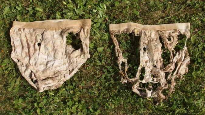 Plus le slip est décomposé, plus le sol est sain.