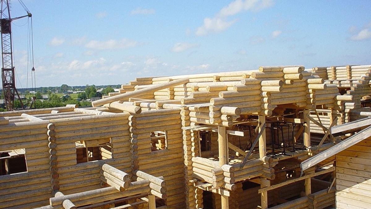 Строители заявили об остром дефиците древесины