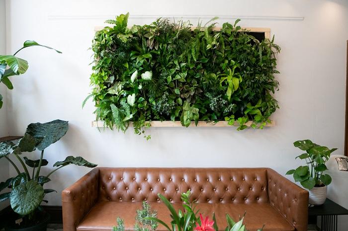 Tropical greenery in a vertical indoor garden