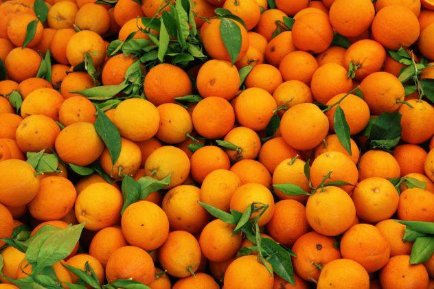 Nagpur is famous for orange