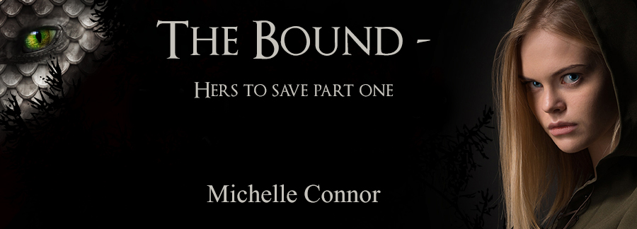 banner michelle connor.jpg