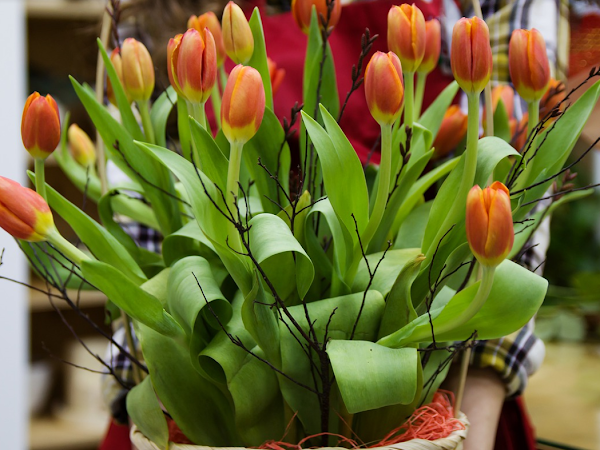 Important Things That You Need to Start Up a Florist Business