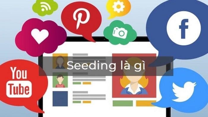 C:\Users\hp\Desktop\seeding-la-gi.jpg