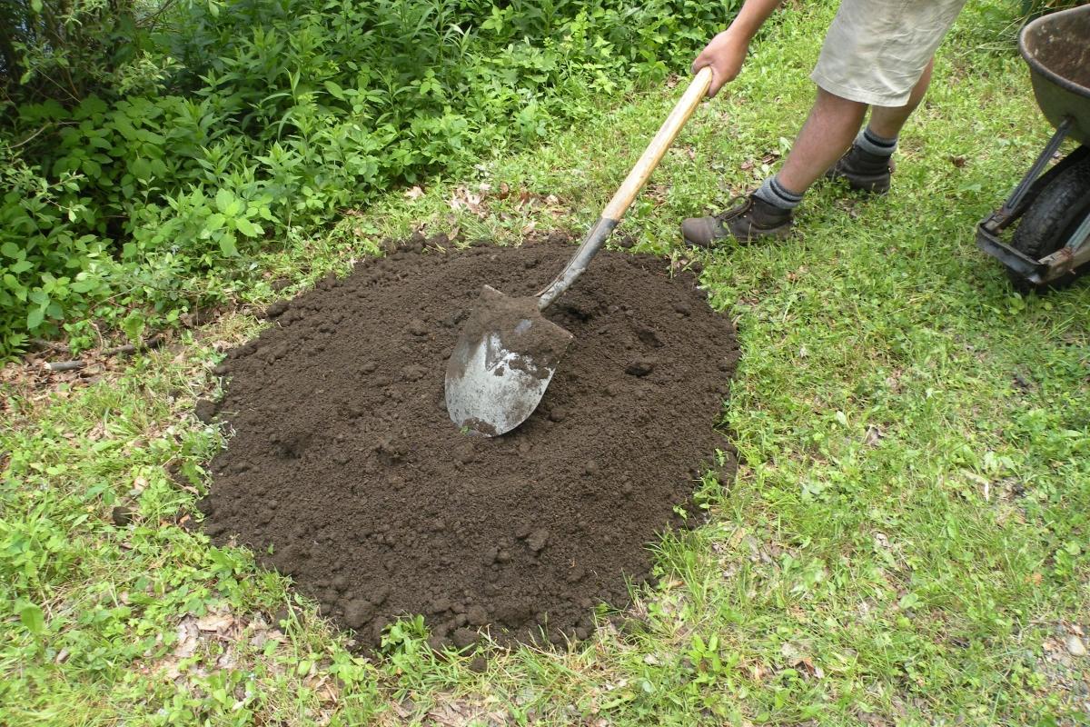 Подготовка почвы для посадки пионов