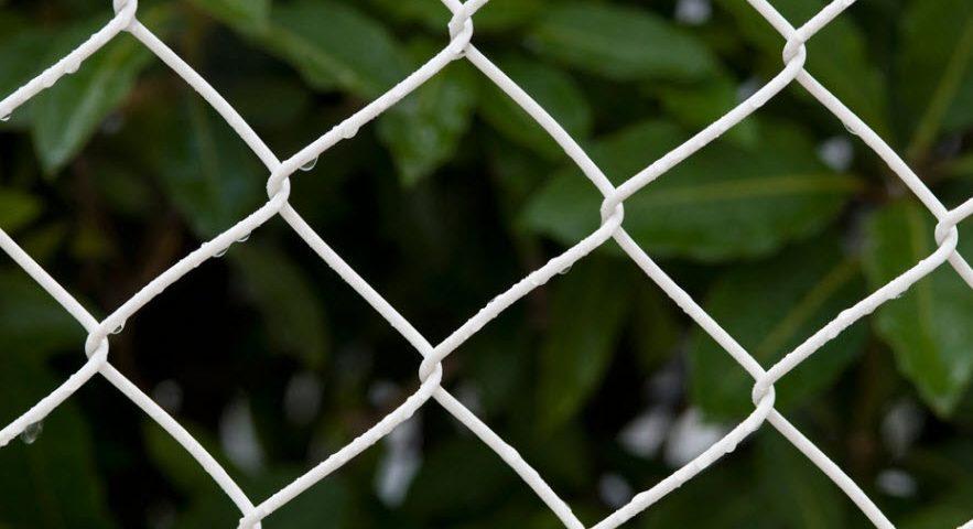 Giải Đáp Lưới B40 Bao Nhiêu Tiền 1 Kg ? - Sắt Thép Thiên Phú