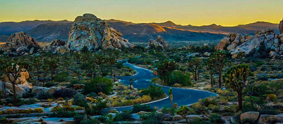 Joshua Tree Is Located In Southern California Between Interstate 10 And Highway 62 It Famous For Its Beautiful Trees Rock Climbing