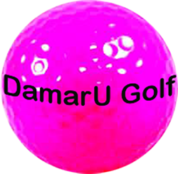 LOGO DAMARU PINK BALL.png