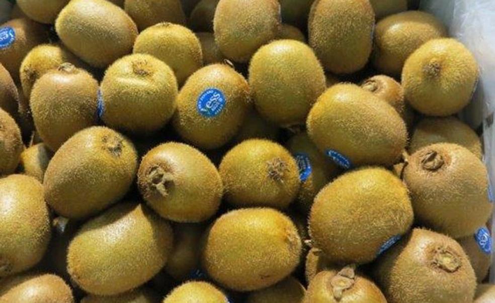 Các lợi ích tuyệt vời của kiwi nhập khẩu đối với sức khoẻ con người