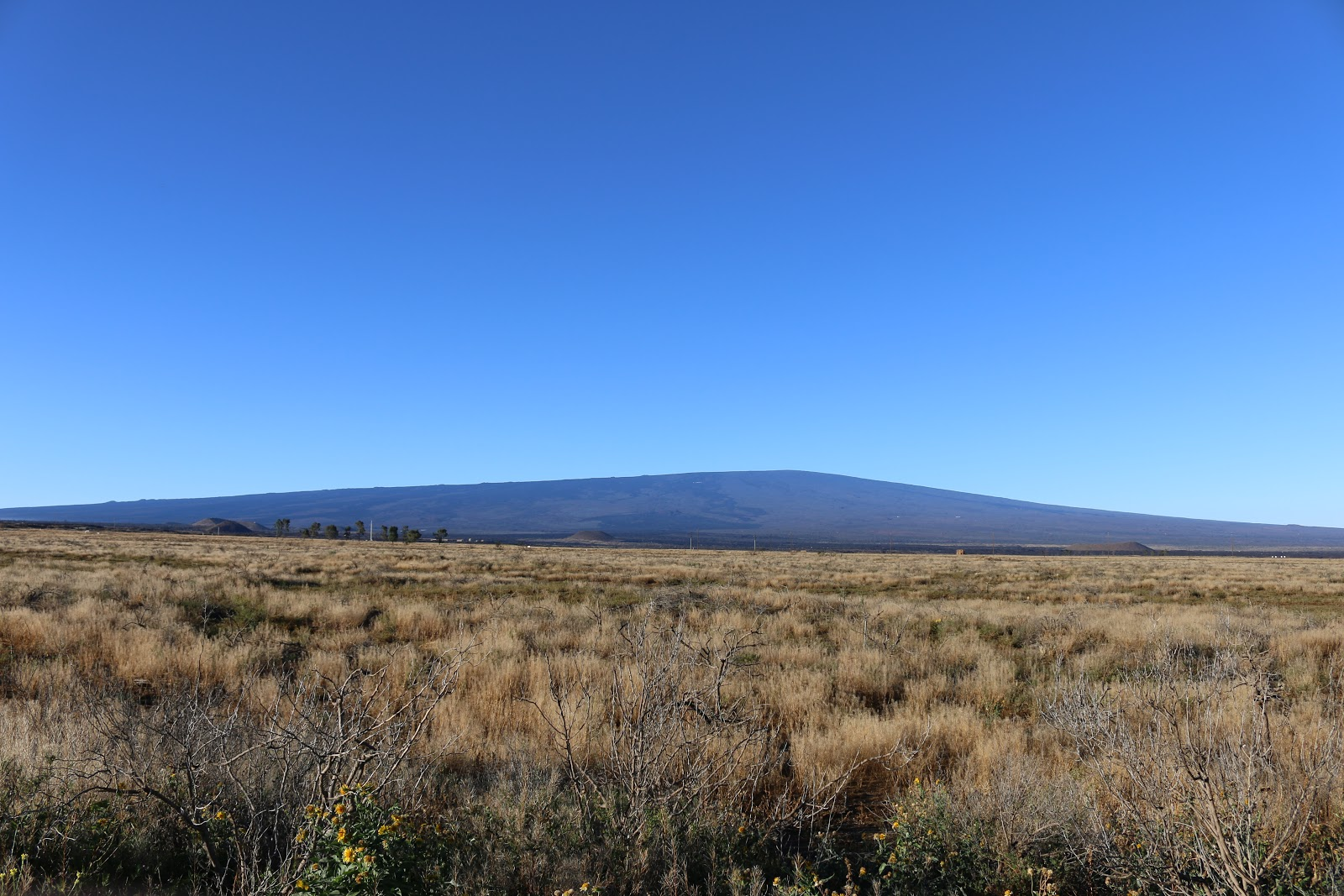 Mauna Loa - longest bike climb in the world