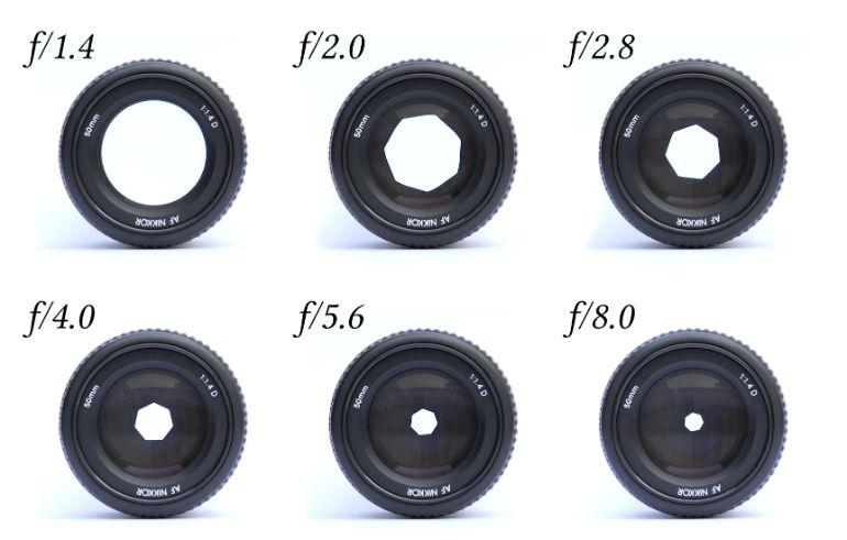 choose the best lens