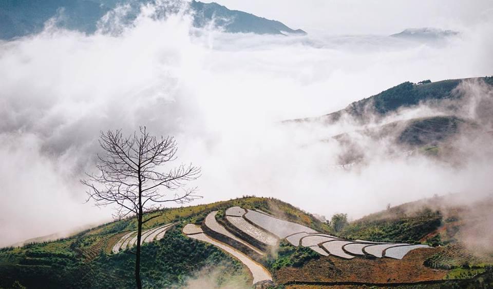 Xứ sở mây trắng Tà Xùa