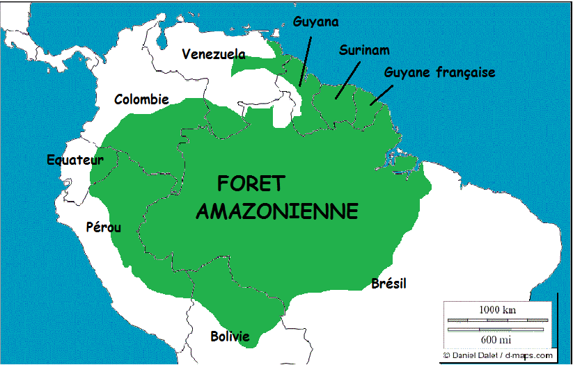https://www.mondialisation.ca/wp-content/uploads/2019/09/carte-foret-amazonie.png