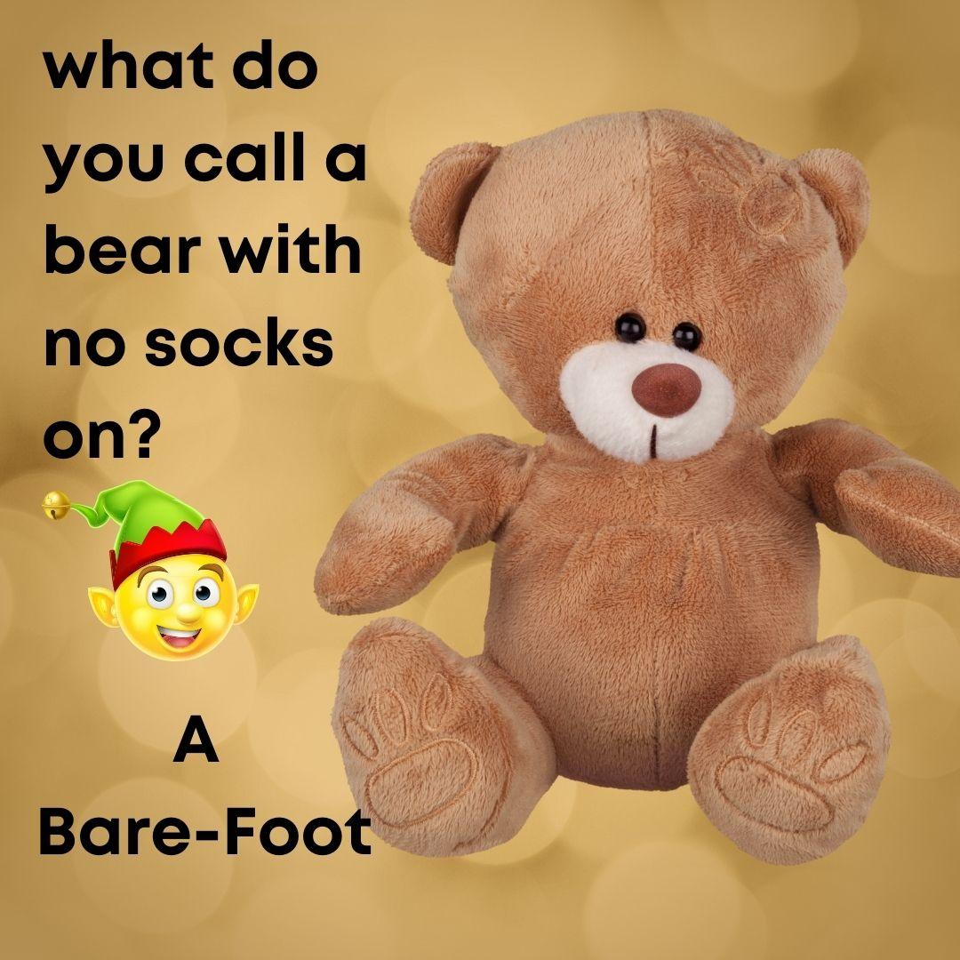 bear sock pun
