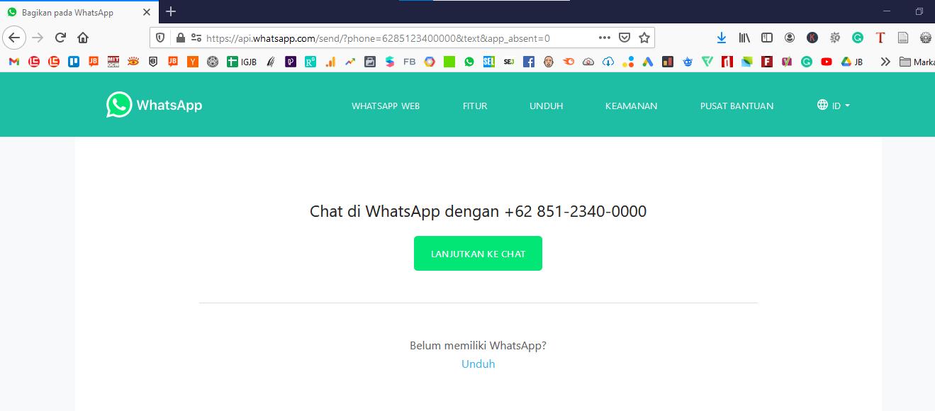 Contoh Tampilan Link WhatsApp WA pada Browser