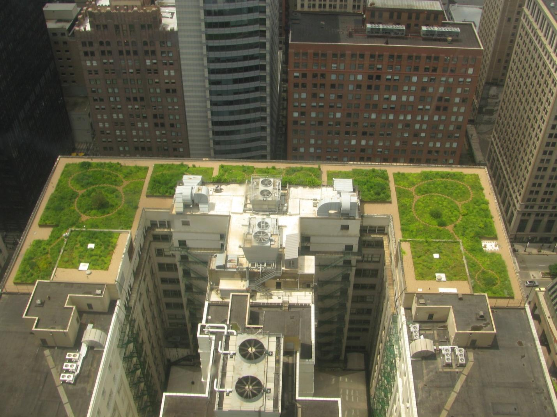 C:\Documents and Settings\Admin\Рабочий стол\20080708_Chicago_City_Hall_Green_Roof.JPG