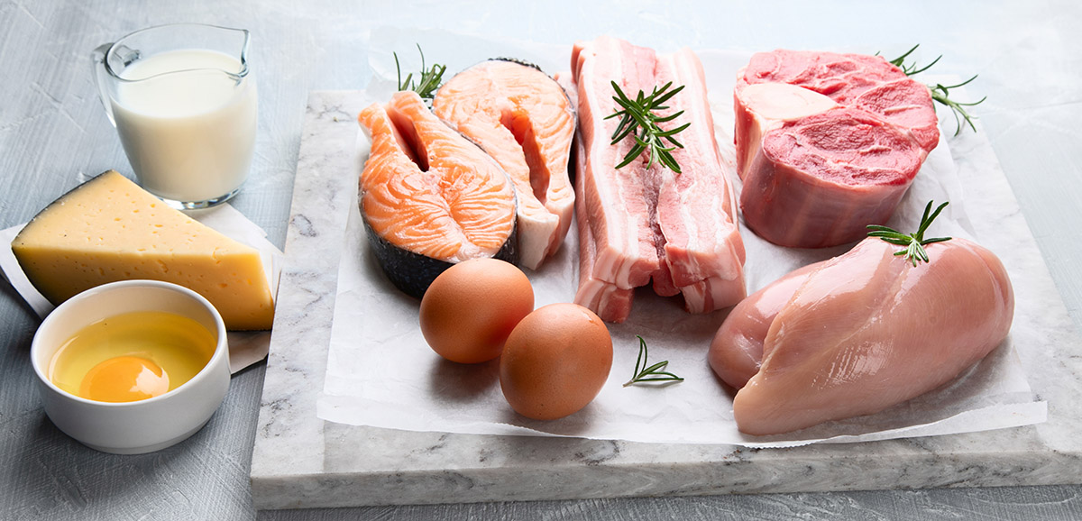 Some animal proteins have high protein bioavailability