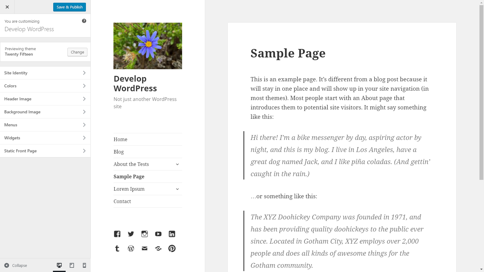Theme Options – The Customize API | Theme Developer Handbook | WordPress  Developer Resources