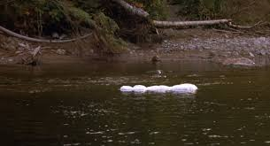 Song to the Siren – TWIN PEAKS – Unwrapping the Plastic