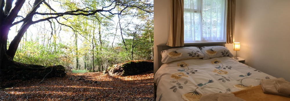 Spreacombe Gardens is a beautiful self-catering accommodation site in North Devon, perfect for family holidays.
