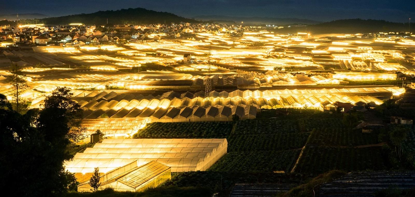 Thành phố Đà Lạt khi về đêm