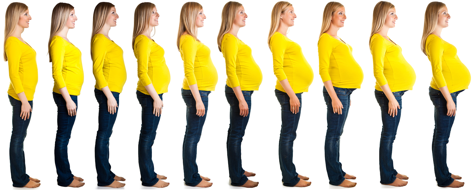 Timeline of a woman during pregnancy