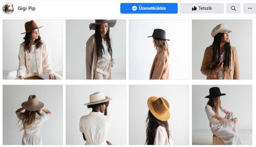 Gigi Pip példa, Facebook Shop létrehozása