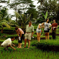 Bali Budaya Cycling-Bali countryside cycling tour - learning rice paddies