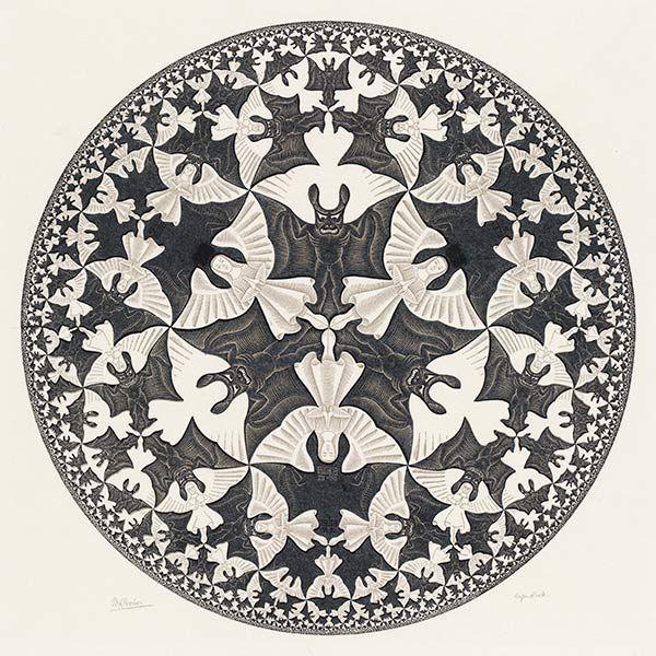 Escher intestino