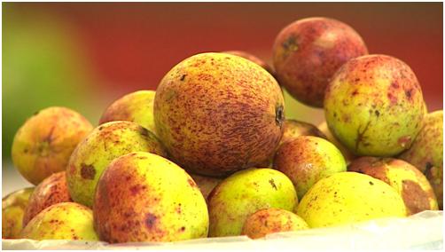 frutas de sergipe