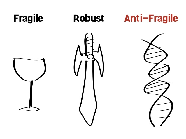 Image result for antifragile