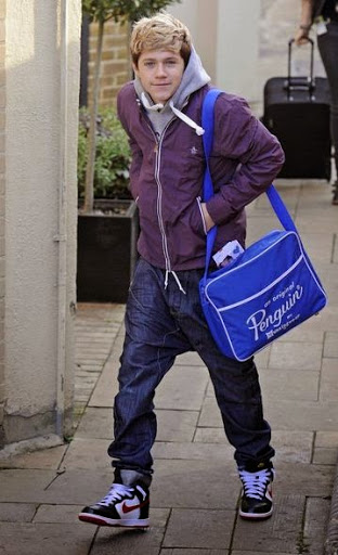 Niall Horan Hairstyles