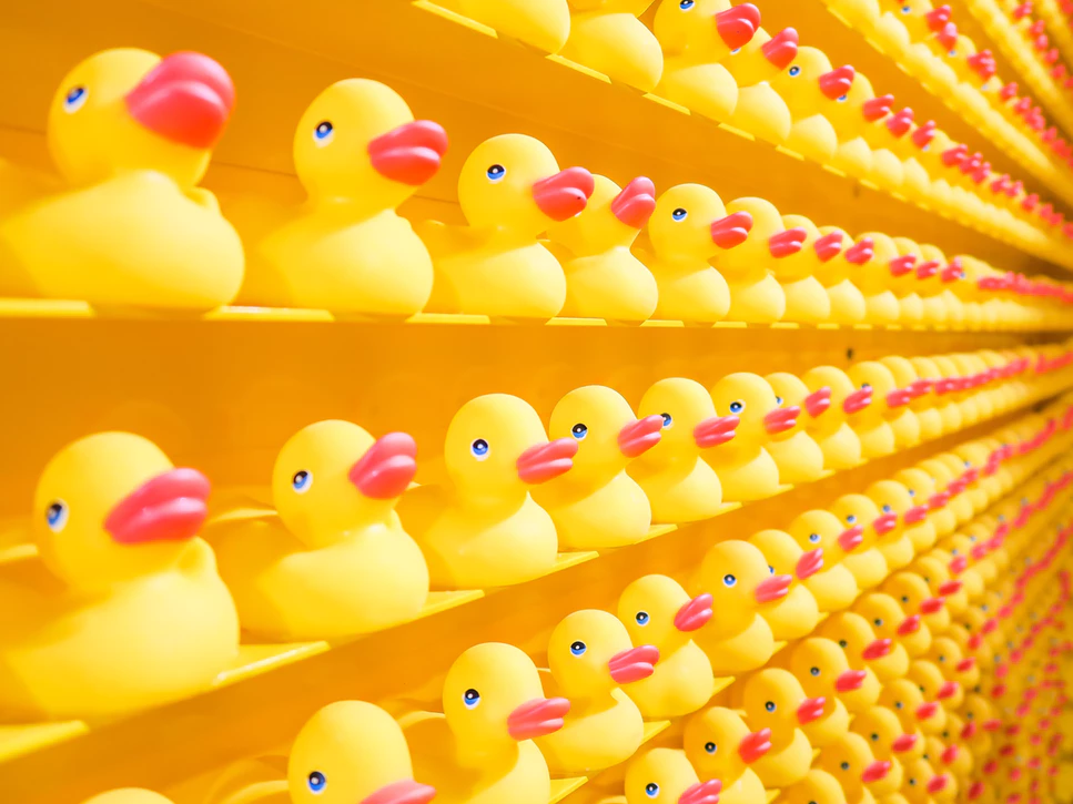 lines and rows of rubber ducks