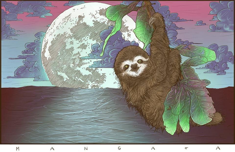 Mangata likes sloths.jpg