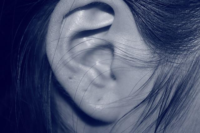 ear-207405_640.jpg