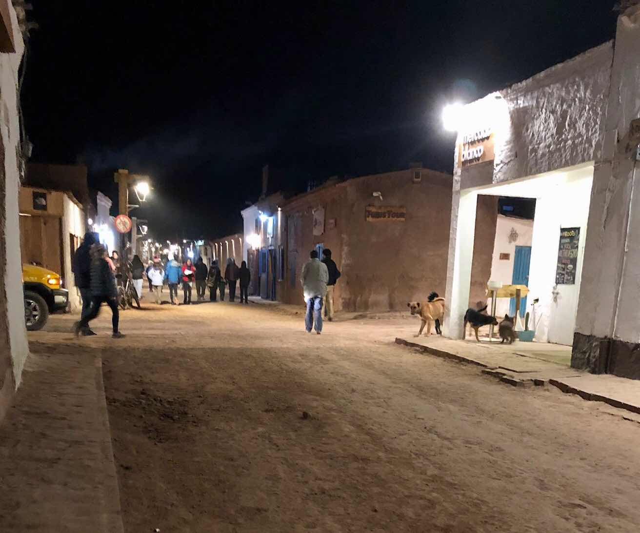 Walking the dirt packed streets, with ever present stray dogs, in San Pedro de Atacama (Source: Palmia Observatory)