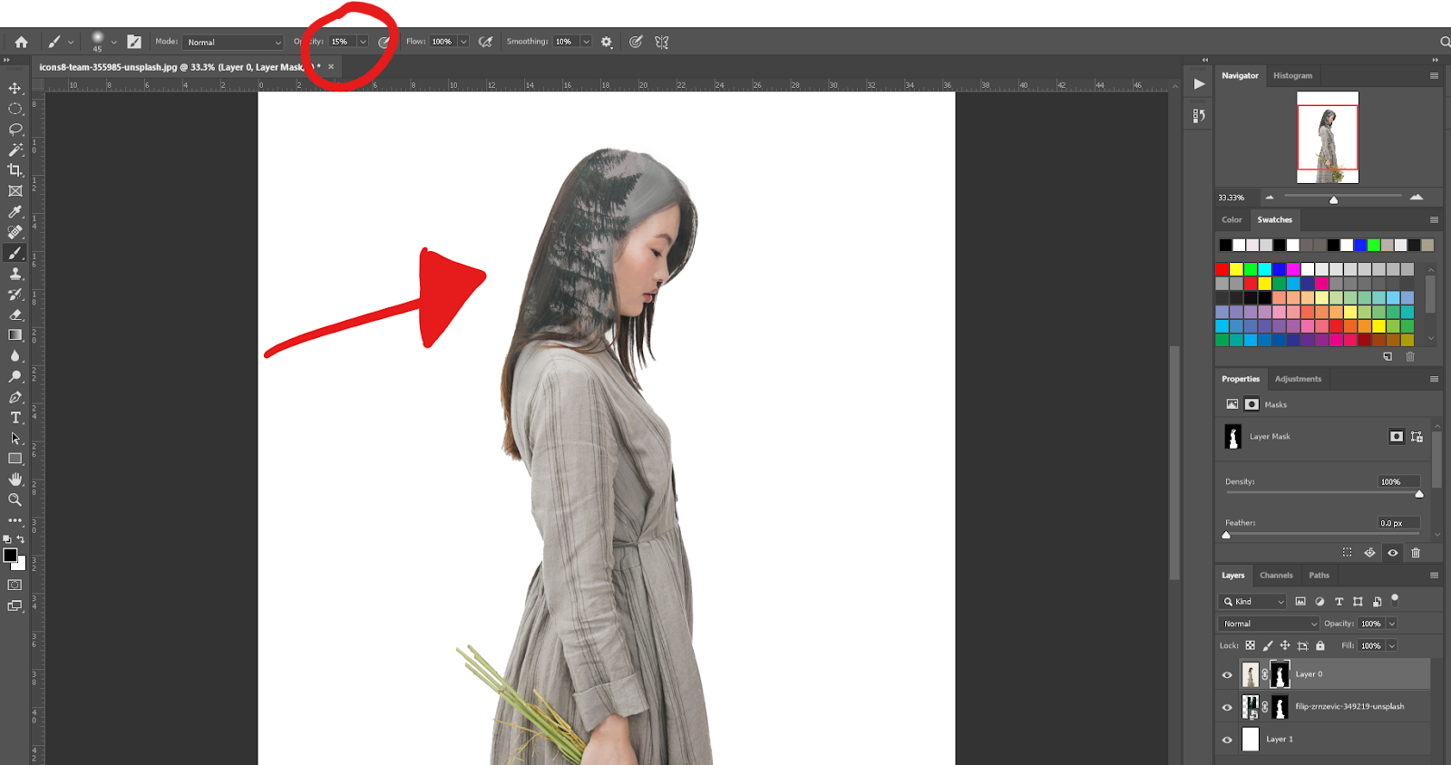 double exposure in Photoshop - Brush