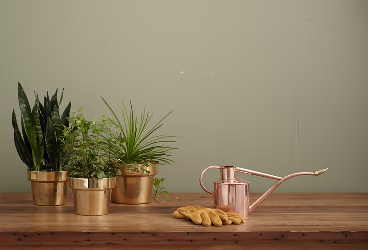 product images for gardening tools