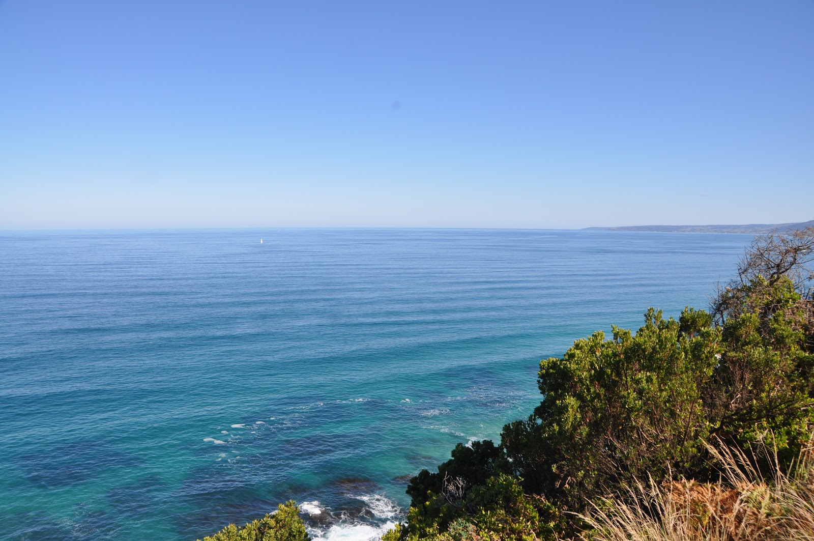 lorne crystal blue ocean view and nearby tree branches seen from viewing point above a cliff. See it from the great ocean road during our australia road trip itinerary.