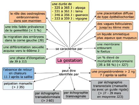Physiologie, constat et pathologie