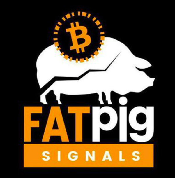 fat pig signals safetrading