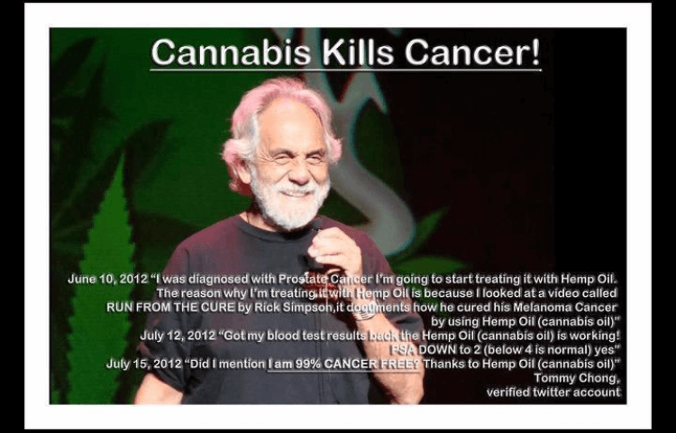 cancer free with marijuana