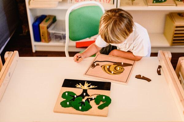 Chương trình Montessori xây dựng nền tảng kiến thức cho trẻ
