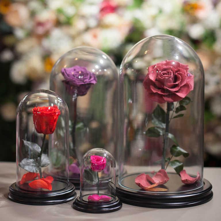 подложные розы под куполом картинки яйца пожелтеют, можно