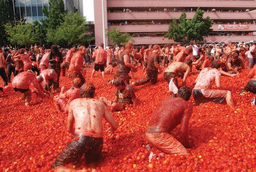 La Tomatina, Food, Food Fights, ZNMD, Zindagi Naa Milegi Dobaara, Spain, Spanish, The Spanish Festival, Buñol, Bunol