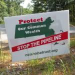 stop the pipeline photo 1