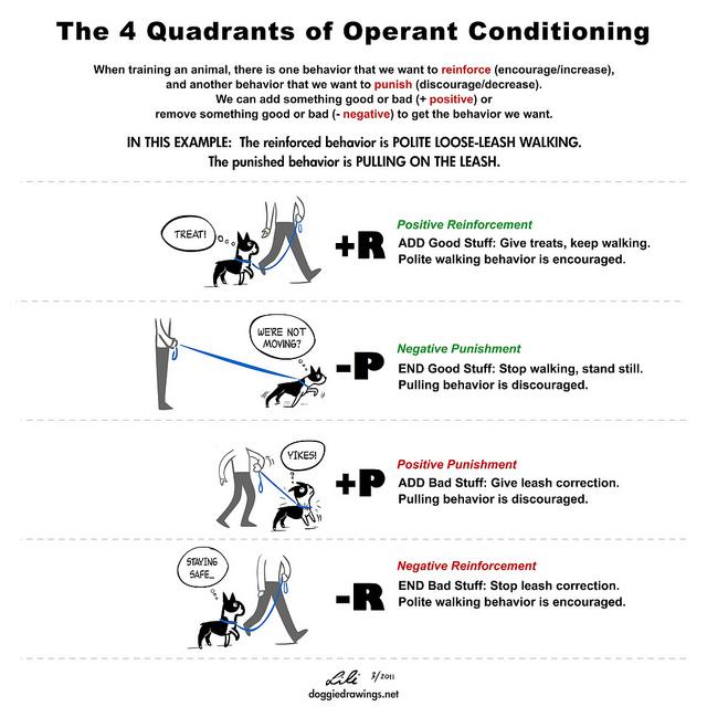 62 Operant Conditioning Yas Psych Txtbk