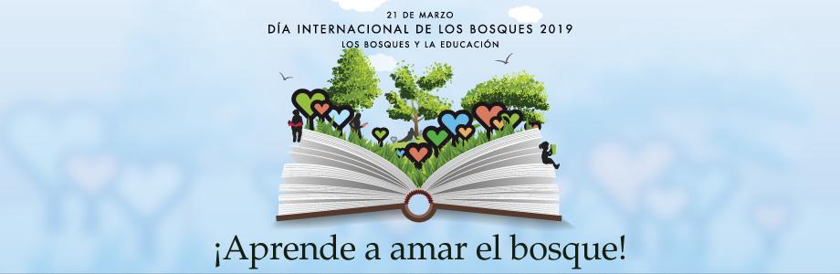 C:UsersInfanteDesktopARTICULOSLOGO DIA DE LOS BOSQUES 2019.png