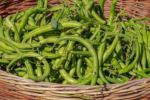 Beans, Vegetables, Basket, Harvest