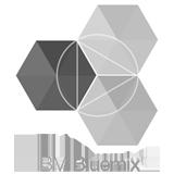 Logo-IBM Bluemix.png